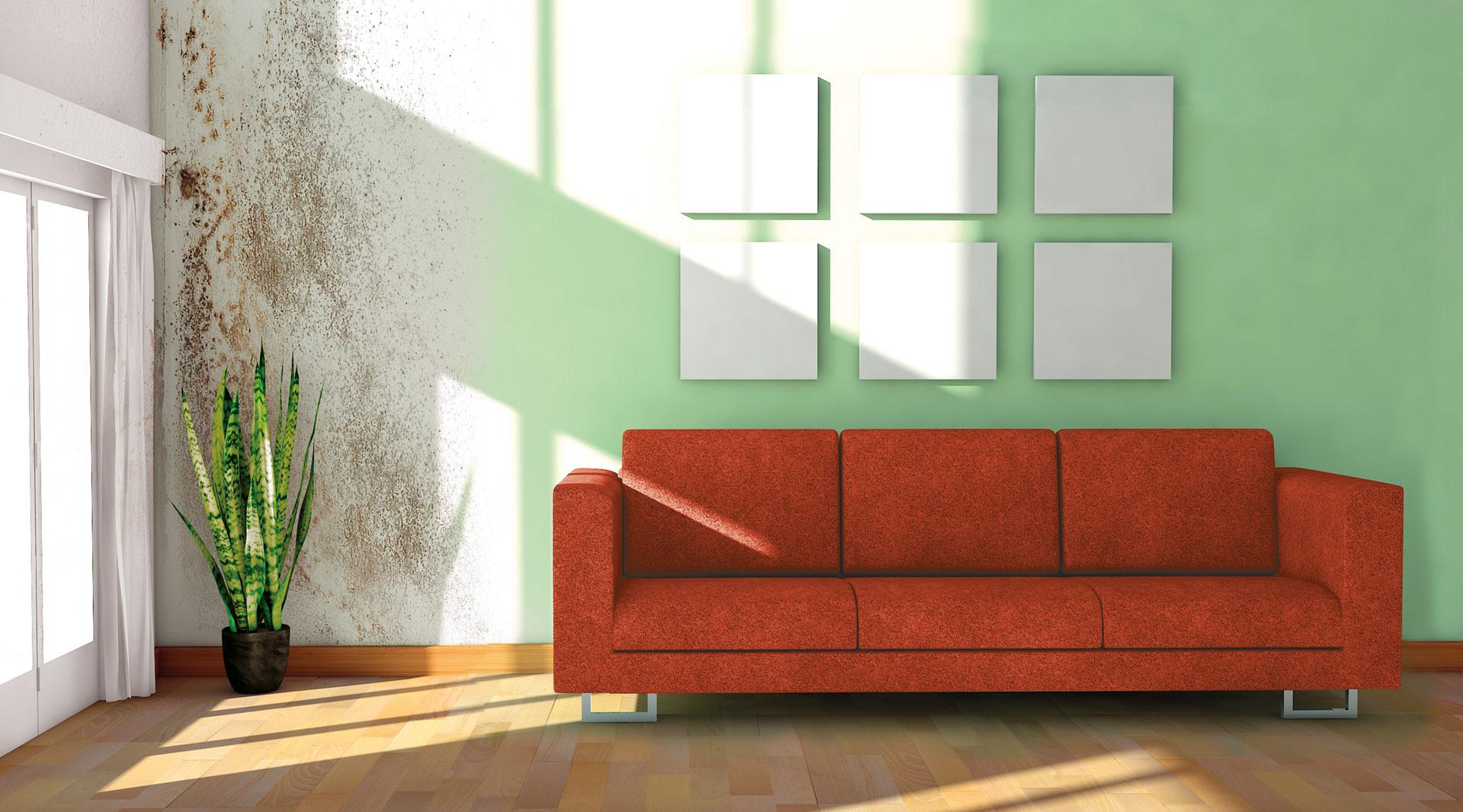 Wohnzimmer Schimmelbildung